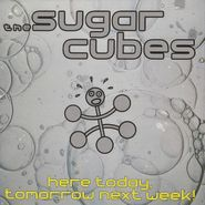 The Sugarcubes, Here Today Tomorrow Next Week (CD)