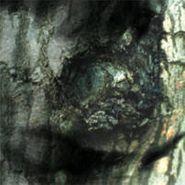 Yann Tiersen, Waltz Of The Monsters (CD)