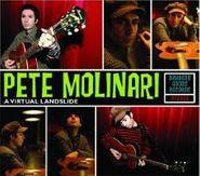 Pete Molinari, Virtual Landslide (CD)