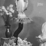 Jesu, Everyday I Get Closer To The Light From Which I Came [Gray Vinyl] (LP)