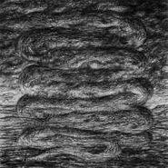 Ash Borer, Bloodlands (LP)