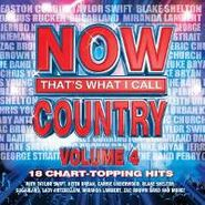 Various Artists, Now That's What I Call Country: Volume 4 (CD)