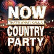 Various Artists, Now That's What I Call A Country Party (CD)