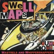 Swell Maps, Wastrels & Whippersnappers (CD)