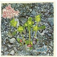 The Polyphonic Spree, Wait (CD)