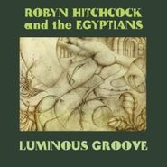 Robyn Hitchcock, Luminous Groove (CD)