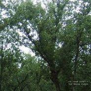 Julianna Barwick, The Magic Place (LP)