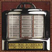 Various Artists, Hey Bo Diddley: A Tribute!