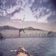 David Wilcox, Reverie (CD)