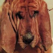 Ty Segall, Goodbye Bread (LP)