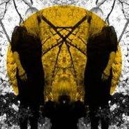 Austra, Feel It Break (CD)