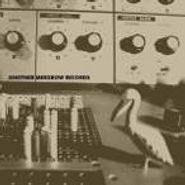 Merzbow, Another Merzbow Records [Box Set] (CD)