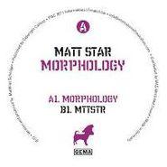 """Matt Star, Morphology (12"""")"""
