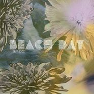 beach day native echoes lp