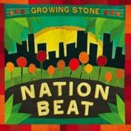 Various Artists, Growing Stone (CD)