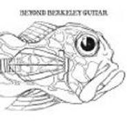 Various Artists, Beyond Berkeley Guitar