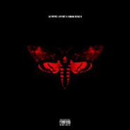 Lil Wayne, I Am Not A Human Being II [Deluxe Edition] (CD)