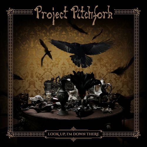 cd project pitchfork