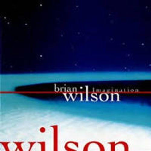 Brian Wilson - Imagination [DTS Digital Surround] (CD