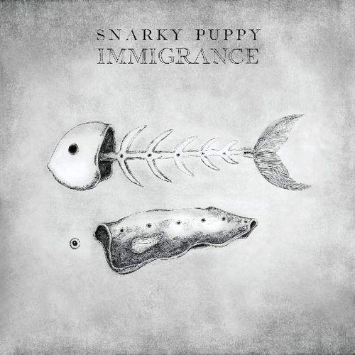 Snarky Puppy Immigrance Cd Amoeba Music