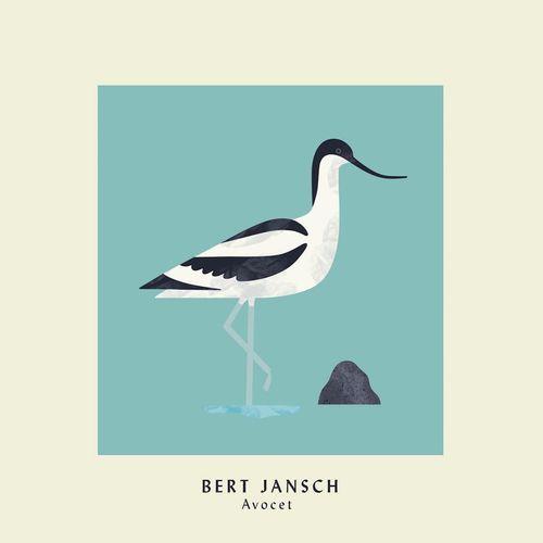 Bert Jansch Avocet Vinyl Lp Amoeba Music