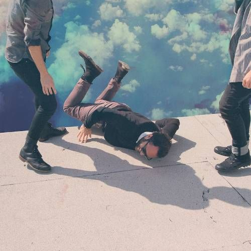 Local Natives Hummingbird Limited Deluxe Di Cut Sleeve