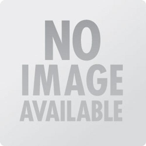 The Mighty Mighty Bosstones - RAM Entertainment