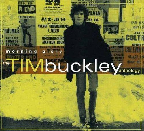 Tim Buckley Morning Glory The Tim Buckley Anthology Cd