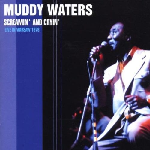 blues genre muddy waters essay An analysis of pieces by howlin' wolf, sonny boy williamson, and muddy waters   illustrates the sexual themes that can be found in lyrics of the chicago blues.