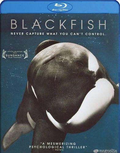 Blackfish Blu Ray Amoeba Music
